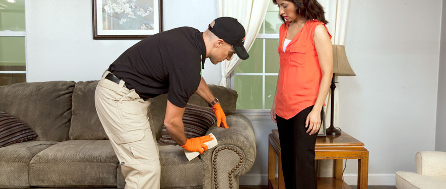 Abbotsford, BC carpet upholstery cleaning