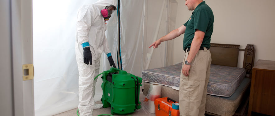 Abbotsford, BC mold removal process